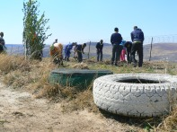 Tires are used as planters