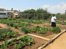 Gardens at Ratang Bana